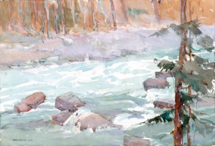 Skykomish River Catherine Gill 12.2014